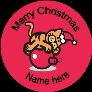 Personalised Christmas Badge ginger cat on red bauble