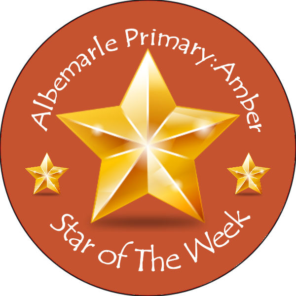 personalised custom badge education and school 3d gold star