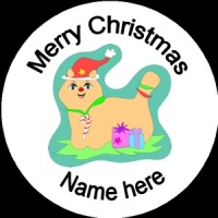 Personalised Christmas Badge cat with presents