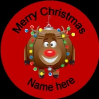 Personalised Christmas Badge rudolph with a bauble and lights