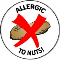 Personalised custom badge allergy allergic to nuts peanuts